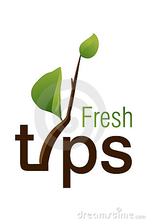 Fresh Tips Logo
