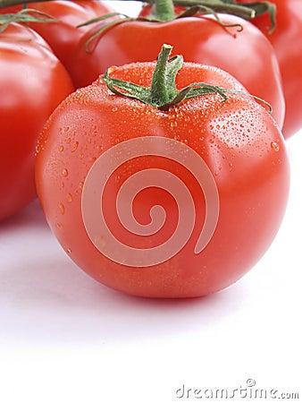 Fresh tomatoes III