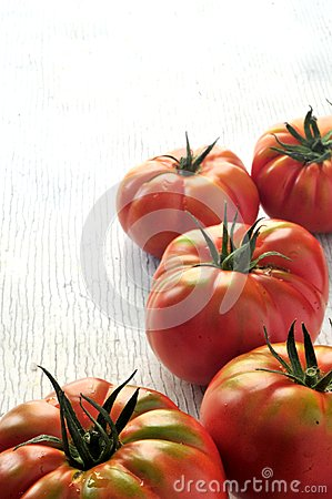 Fresh tomatoes for salad organic green agriculture