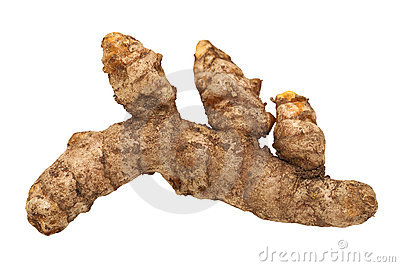 Fresh Turmeric Root Isolated
