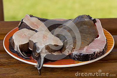 Fresh various fish