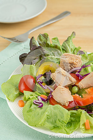 Fresh vegetable salad with tuna