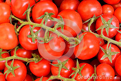 Fresh vegetable, tomato