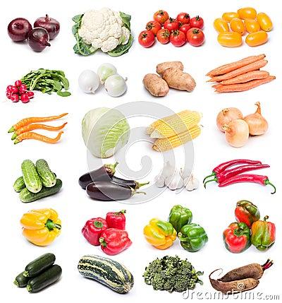 Free Fresh Vegetables Stock Photo - 3141830