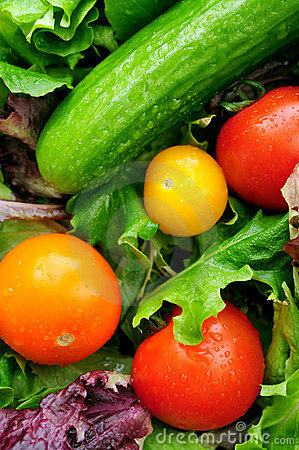 Free Fresh Vegetables Royalty Free Stock Photos - 4350218