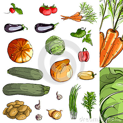 Fresh Vegetables Green Collection