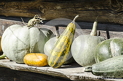 Fresh vegetables on old rustic background