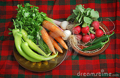Fresh Vegetables on Red Plaid