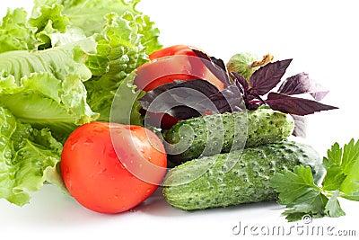 Fresh vegetables. Summer abundance of vegetables