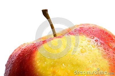 A fresh wet apple on white background