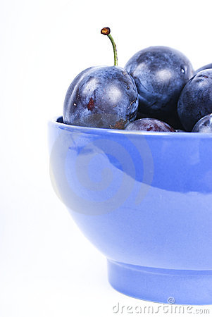 fresh wet dark blue plums
