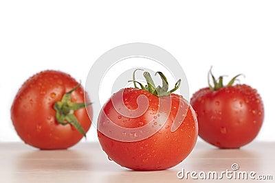 Fresh wet red tomatoes