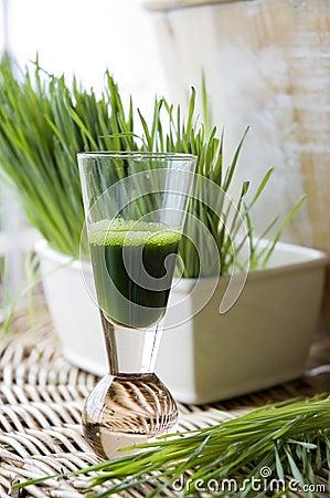 Free Fresh Wheatgrass With Wheatgrass Juice Royalty Free Stock Photo - 25315525