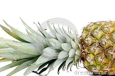 Fresh whole pineapple. Close up.