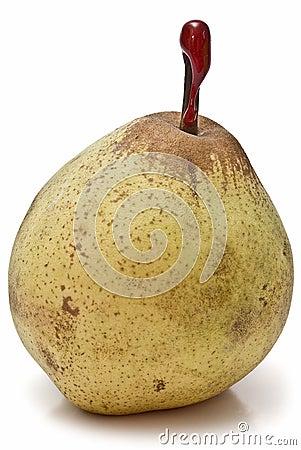 A fresh winter pear.