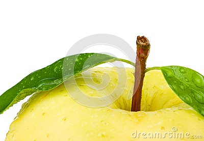 Fresh yellow apple with leaf.