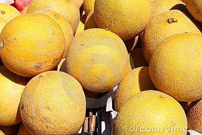 Fresh yellow melons