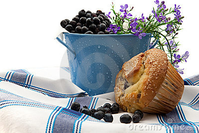 Freshly Baked Blueberry Muffin