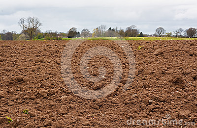 Freshly dug agricultural field