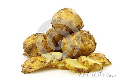 Freshly harvested Dutch new potatoes