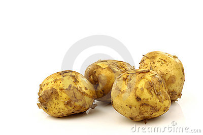 Freshly harvested Dutch new potatoes