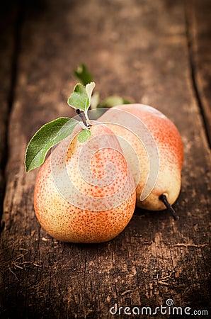 Freshly harvested ripe red pears
