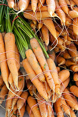 Freshly Picked Bunches of Organic Carrots