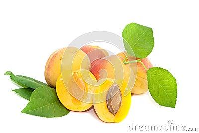 Freshness Apricot