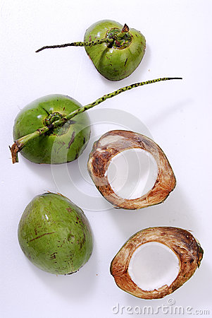 Freshness Coconut