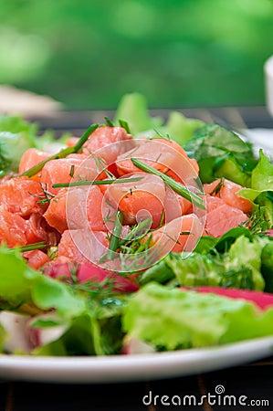 Freshness Salmon Salad