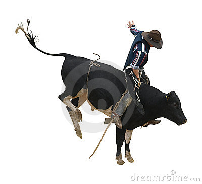 Free Fresian Bucking Bull With Cowboy Stock Image - 17963481