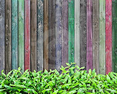 Frest grass and multicolor wood