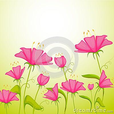 Färgrik blomma