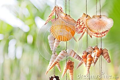 Färgrika hängande skal