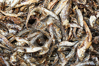 Fried anchovies