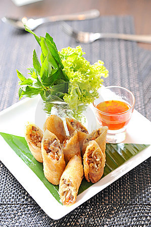 Free Fried Chinese Traditional Spring Rolls Royalty Free Stock Photo - 22181125