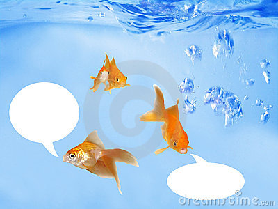 Friendly Goldfishes Speaking Under Waves