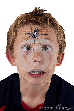 Frightened boy with spider