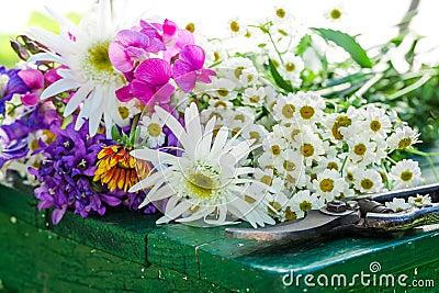 download frische schnittblumen garten welche blumen   siteminsk, Garten und erstellen
