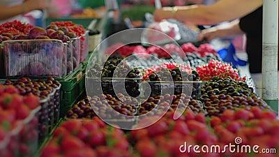 Frischbeeren auf dem Markt stock video