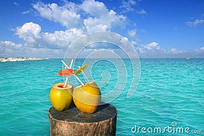Frische zwei Kokosnusssaft-Wasserstrohe in Karibischen Meeren