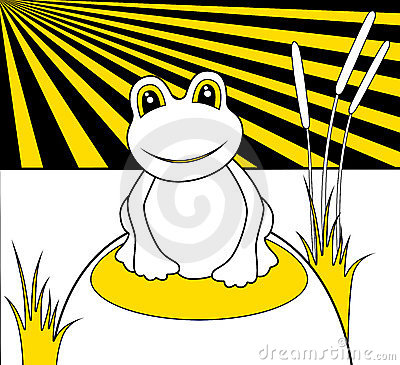 Frog with big eyes