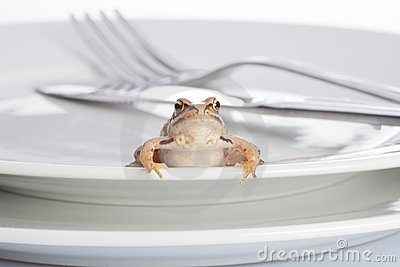 Frog and diner