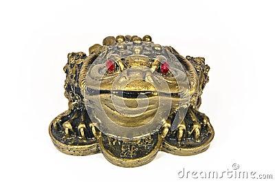 Frog feng shui