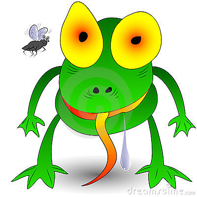 Frog,fly