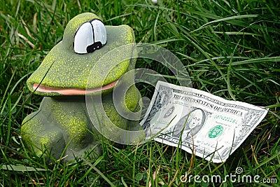 Frog found dollar