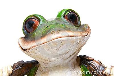 Frog Head with Big Eyes