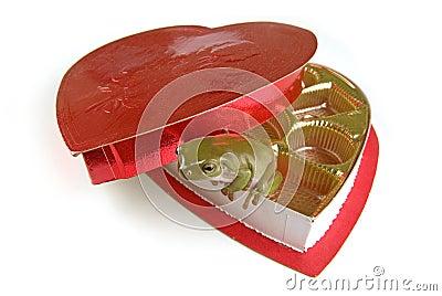 Frog heart