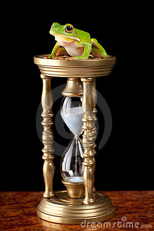 Frog on hour-glass