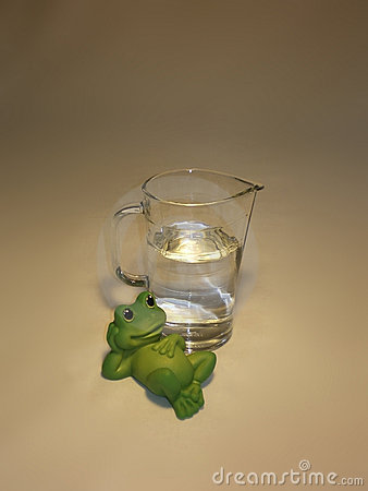 Frog and jug with fresh water